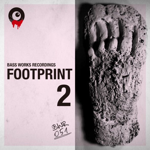 BWR05_footprint2_th